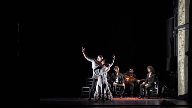 compania-flamenca-francisco-hidalgo-ver-oir-y-bailar-24-festival-de-jerez