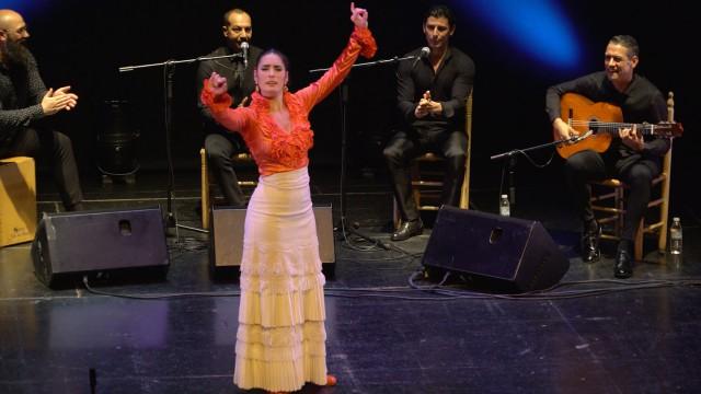 alegrias-olga-llorente-recital-de-baile-silla-de-oro-madrid