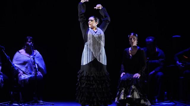 gala-vii-concurso-internacional-de-baile-flamenco-puro-de-turin-24-festival-de-jerez